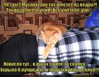 https://lolkot.ru/2014/08/01/utomlennyye-skalkoy/