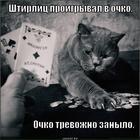 https://lolkot.ru/2013/12/18/v-ochko/