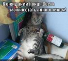 https://lolkot.ru/2012/12/21/v-ozhidanii-kontsa-sveta/