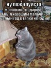 https://lolkot.ru/2010/08/17/v-tapki-ne-gadil/