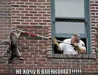 https://lolkot.ru/2011/01/04/v-voyenkomat/