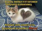 https://lolkot.ru/2014/02/15/valekotinka/