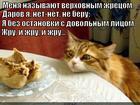 https://lolkot.ru/2015/08/26/velikiy-zhrun/