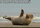 https://lolkot.ru/2011/03/18/videl-golyh-lyudey/