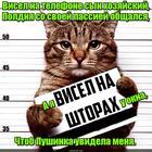 https://lolkot.ru/2017/05/11/visyachiy-obekt-vozhdeleniya/