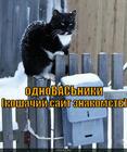https://lolkot.ru/2015/04/17/vkotakte/