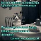 https://lolkot.ru/2015/01/09/vkusnaya-mstya/
