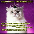 https://lolkot.ru/2015/05/29/vneshniy-glamur-vnutrennyaya-pustota/