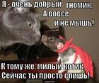 https://lolkot.ru/2014/12/08/vneshnost-byvayet-obmanchiva/
