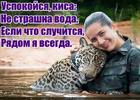https://lolkot.ru/2018/05/10/vodolaska/