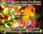 https://lolkot.ru/2015/01/01/volshebstvo-2/