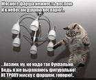 https://lolkot.ru/2015/11/02/vospetaya-nezhnost/