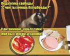 https://lolkot.ru/2019/07/06/vospitatelnyy-vybor/