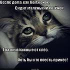 https://lolkot.ru/2013/02/07/vozle-doma-tvoyego/