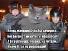 https://lolkot.ru/2015/10/31/vozvrascheniye-begemota/