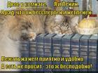 https://lolkot.ru/2014/12/04/vpityvaya-mudrost/