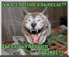 https://lolkot.ru/2015/05/10/vrag-poverzhen/