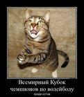 https://lolkot.ru/2012/06/20/vsemirnyy-kubok/
