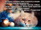 https://lolkot.ru/2017/01/10/vseproscheniye/