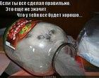 https://lolkot.ru/2012/06/01/vsyo-sdelal-pravilno/