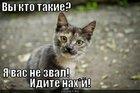 https://lolkot.ru/2011/10/20/vy-kto-takiye/