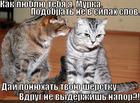 https://lolkot.ru/2013/03/12/vyderzhish-napor/