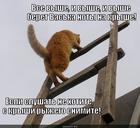 https://lolkot.ru/2013/08/30/vysoko-beryot/