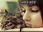 https://lolkot.ru/2012/08/24/ya-kot-3/