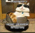 https://lolkot.ru/2011/10/30/ya-krutoy-kote/