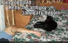 https://lolkot.ru/2013/03/26/ya-zhe-govoril-4/