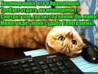 https://lolkot.ru/2018/05/10/zablokirovannyy/
