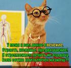 https://lolkot.ru/2014/02/19/zabotlivyy-net-ozabochennyy-doktor/