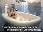 https://lolkot.ru/2012/04/03/zadachka/