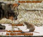https://lolkot.ru/2013/12/16/zahochesh-zhit-ne-tak-raskoryachishsya/