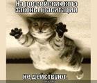 https://lolkot.ru/2010/07/11/zakony-gravitatsii-ne-deystvuyut/