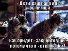 https://lolkot.ru/2011/03/26/zakroyte-ushi/