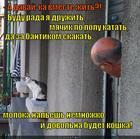 https://lolkot.ru/2015/05/05/zamanchivoye-predlozheniye/