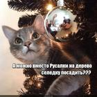 https://lolkot.ru/2019/12/25/zamena-obekta-4/