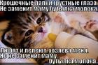 https://lolkot.ru/2013/03/13/zameny-net/