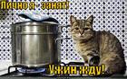 https://lolkot.ru/2013/11/27/zanyat-2/