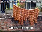 https://lolkot.ru/2015/07/08/zarabatyvay-ne-vazhno-kak/