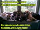https://lolkot.ru/2020/07/21/zaschita-maloimuschih/