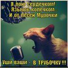 https://lolkot.ru/2013/10/24/zavernula/
