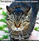 https://lolkot.ru/2012/09/20/zayebali/