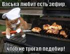 https://lolkot.ru/2012/11/17/zefir/