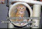 https://lolkot.ru/2010/08/24/zemlya-v-illyuminatore/
