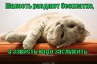https://lolkot.ru/2012/08/08/zhalost-vs-zavist/