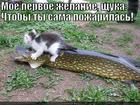 https://lolkot.ru/2013/11/05/zhelaniye/