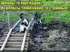 https://lolkot.ru/2020/09/09/zheleznaya-doroga-v-romashkovo/