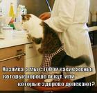 https://lolkot.ru/2010/10/31/zheny/